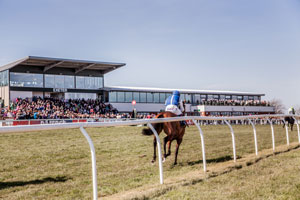 Image result for exeter races